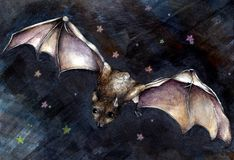 Whimsical Bat Illustration Royalty Free Stock Images