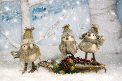 Whimsical Christmas Birds on Sled. Three whimsical birds dressed in winter hats and scarves, two birds riding on sled. Winter village and birch trees are softly Stock Photography