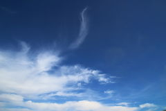 Whimsical clouds of summer. Whimsical figures of clouds in the summer sky royalty free stock photo