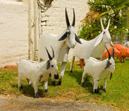 Whimsical hand-crafted garden ornaments. Endearing animals made of tin for sale at a landscaping store Stock Photography