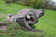 A whimsical stump, shaped like a fantastic monster. stock image