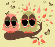 Whimsy Owls. Illustration of whimsical owls on  a tree branch Stock Images