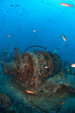 Whinch on ship wreck. Anchor winch on a war ship wreck with a school of fish Royalty Free Stock Image