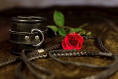 Whip, cuff and rose. As background Stock Photos