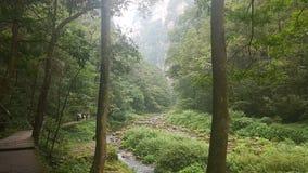 Whip Stream dorato nel parco nazionale di Zhangjiajie fotografia stock