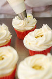 Whipped butter cream frosting applied to cupcakes Stock Photos