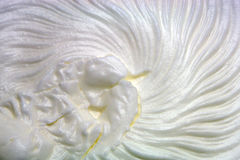 Whipped cream. White whipped cream close up Stock Photo