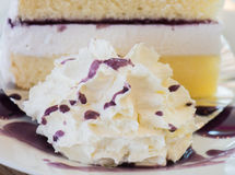 Whipped cream and blueberry cake Stock Photo