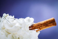 Whipped cream and cinnamon Stock Images
