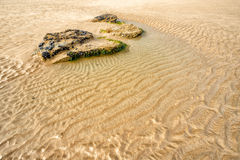 whipsiderry的海滩 库存照片