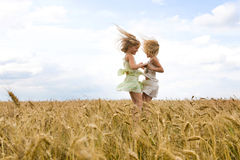Whirling. Portrait of energetic twin sisters whirling in wheat field and having fun Stock Image