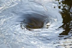 Whirlpool. Water whirlpool Stock Images