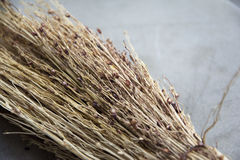 Whisk broom. Local details of small brooms made from sorghum Royalty Free Stock Photos