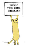 Whiskers. Cartoon illustration of a cat holding a sign and a pun about whiskers Royalty Free Stock Images