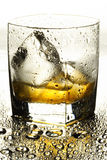 Whiskey Photo stock