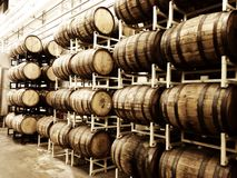 Whiskey Barrels. Rows of whiskey barrels Royalty Free Stock Photography