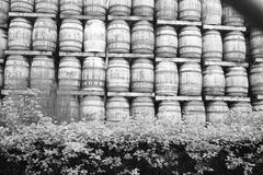 Whiskey Barrels. Stacked ready for use, at distillery in Balloch, Scotland stock images