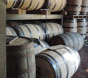 Whiskey barrels. Wooden whiskey barrels aging in distillery Stock Photography