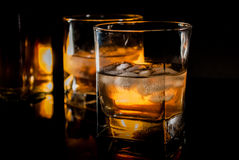 Whiskey or bourbon. Whiskey, bourbon or brown rum on black reflection background Royalty Free Stock Image