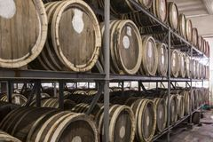 Whiskey and brandy distillery. Scotch Whisky Barrel rows. Whiskey and brandy distillery. Oak barrel used to age whiskey stock images