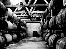 Whiskey. From Denmark, 2-30y. Stauning Royalty Free Stock Photography