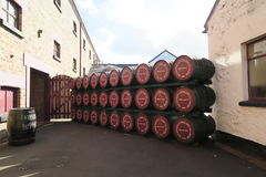 Whiskey Distillery. Black Bush Whiskey from Northern Ireland - in the Distillery royalty free stock image