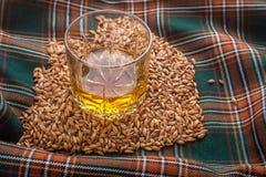 Whiskey e grani Fotografie Stock