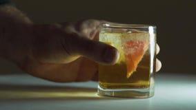 Whiskey, ghiaccio, limone e pompelmo video d archivio