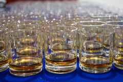 Whiskey glasses in a row Royalty Free Stock Image
