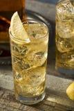 Whiskey Highball con Ginger Ale immagini stock libere da diritti
