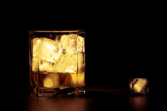 Whiskey with ice cubes Stock Image