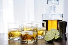 Whiskey med is fotografering för bildbyråer