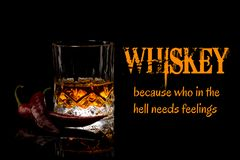 Whiskey Meme, because who in the hell needs feelings. Funny memes and sayings stock photography