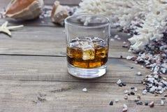 Whiskey parmi des coquilles image libre de droits