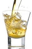 Whiskey splash Stock Images