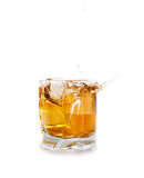 Whiskey splash Stock Photos
