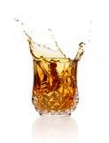 Whiskey Splash Isolated on White Background Stock Photos