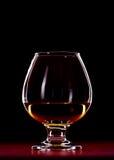 Whiskeyexponeringsglas Fotografering för Bildbyråer