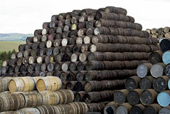 Whisky barrels Stock Images
