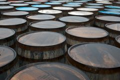 Whisky Barrels. After the rain. A storage area of barrel s wet coated Royalty Free Stock Image
