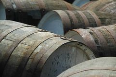 Whisky barrels. In a distillery in scotland Stock Images