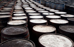 Whisky barrels Royalty Free Stock Images