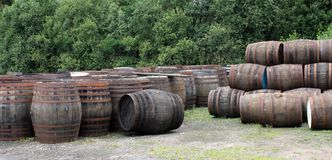 Whisky Barrels. Stock Photos