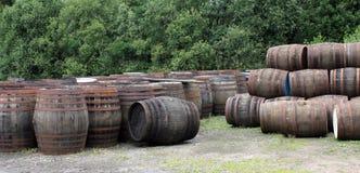 Whisky Barrels. Stock Photos