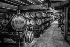 Whisky Barrels in Black and White royalty free stock images