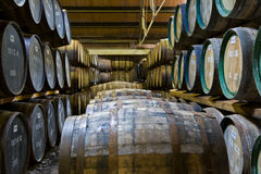 Whisky barrels in a distillery. Whisky barrels maturing in a distillery in Scotland stock photo