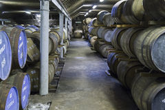 Whisky barrels in a distillery Royalty Free Stock Photo