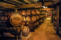 Whisky Barrels. Whisky maturing in barrels at the famed Laphroaig Distillery, Islay, Scotland Stock Images