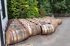 Whisky battlels Obrazy Stock