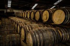 Whisky beczki Obraz Royalty Free